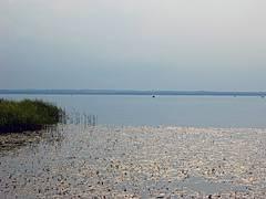 Плещеево озеро - рыбалка, цены, развлечения, особенности, как добраться
