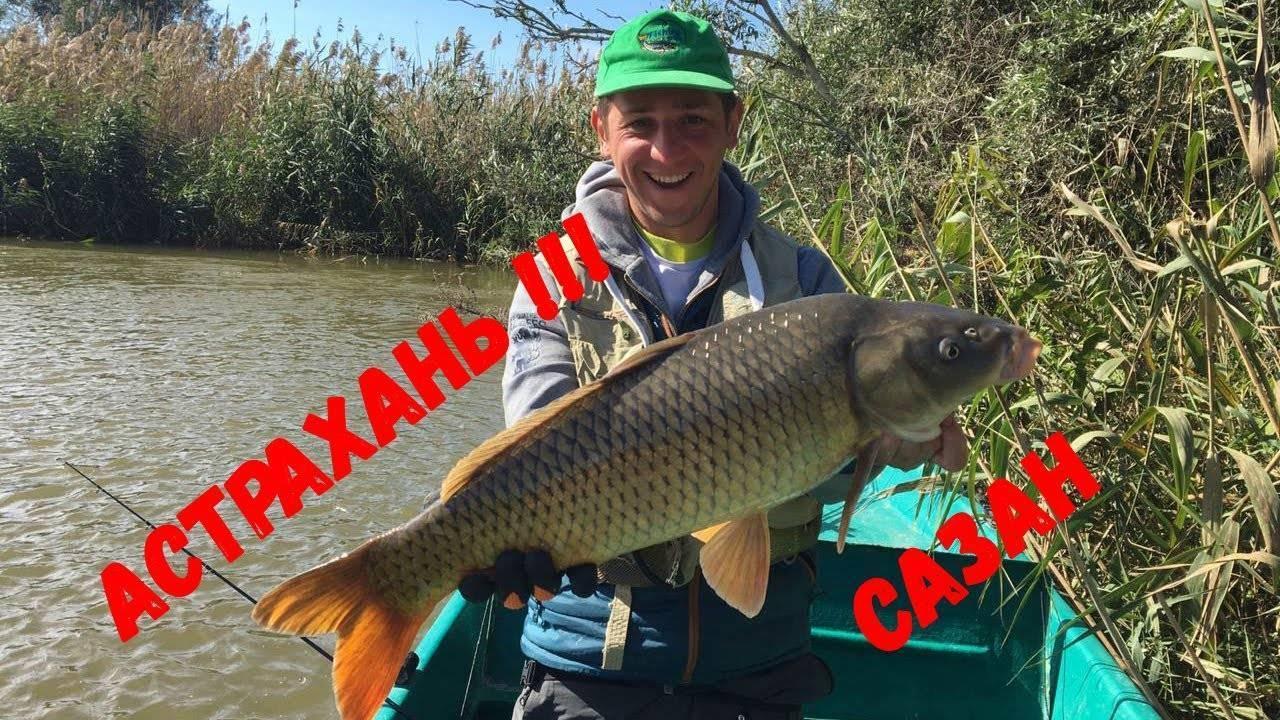 Когда лучше рыбачить в астрахани?