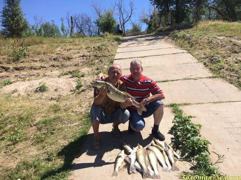 Ловим буффало в трехречье весной с апреля и летом - рыбалка на ахтубе с комфортом - база трёхречье