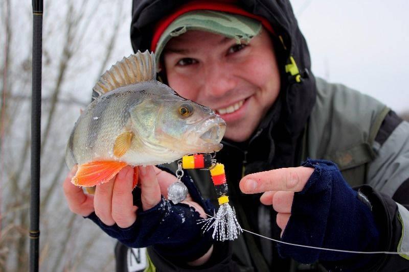 Ручейник: лучшая наживка для ловли крупной рыбы! советы как словить и где искать наживку (100 фото)