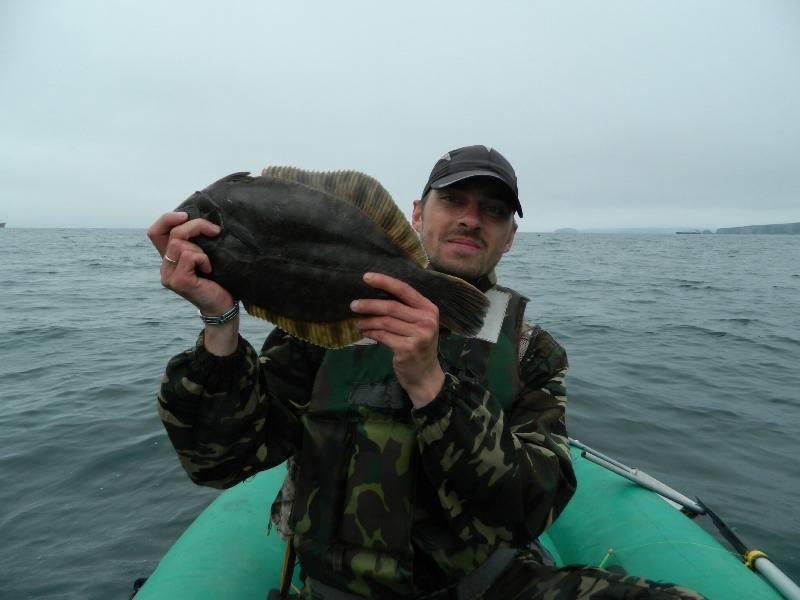 Рыба камбала: польза и вред, среда обитания, фото, рецепт приготовления