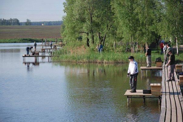 Платная рыбалка в подмосковье - барыбино. ловля рыбы недалеко от москвы!