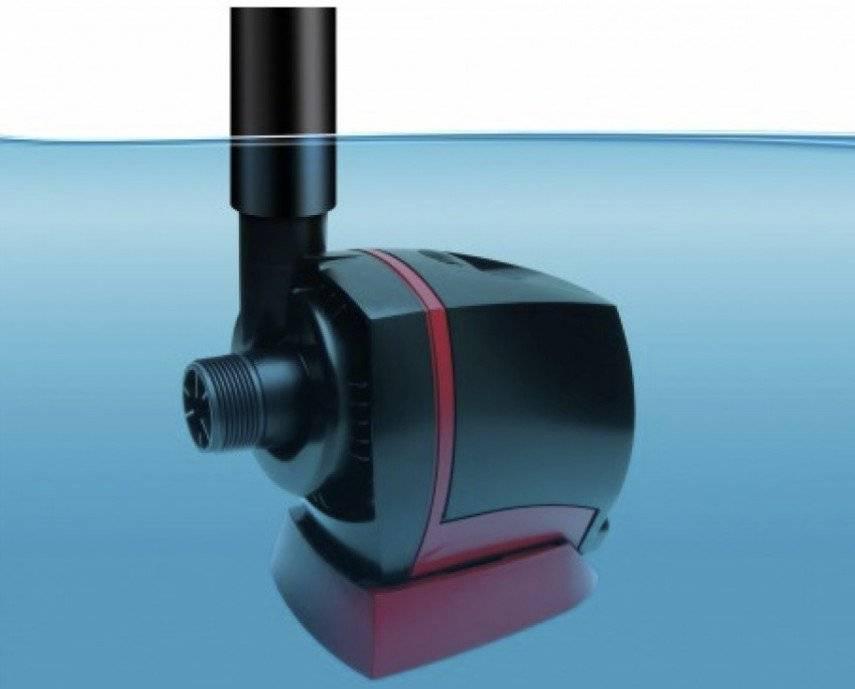 Помпы для аквариума (30 фото): внешние и подъемные аквариумные водяные помпы, помпа-фильтр и помпа течения. для чего они нужны? как правильно установить?