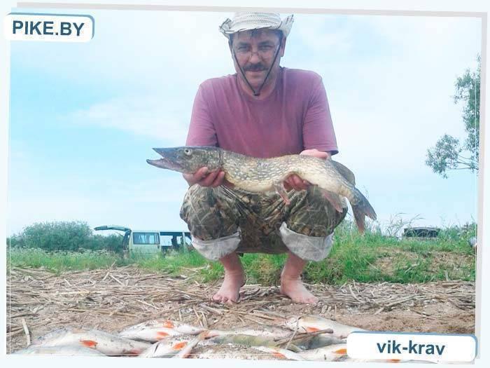Особенности рыбалки на медвежьем озере в щелковском районе московской области