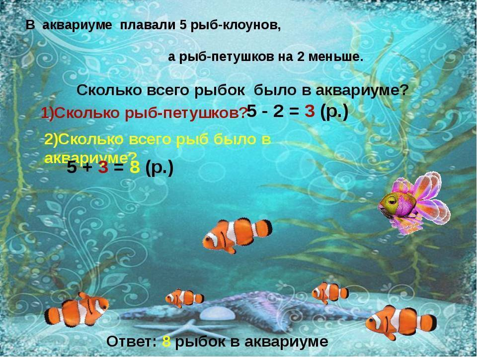Есть ли память у рыб: мифы и реальность