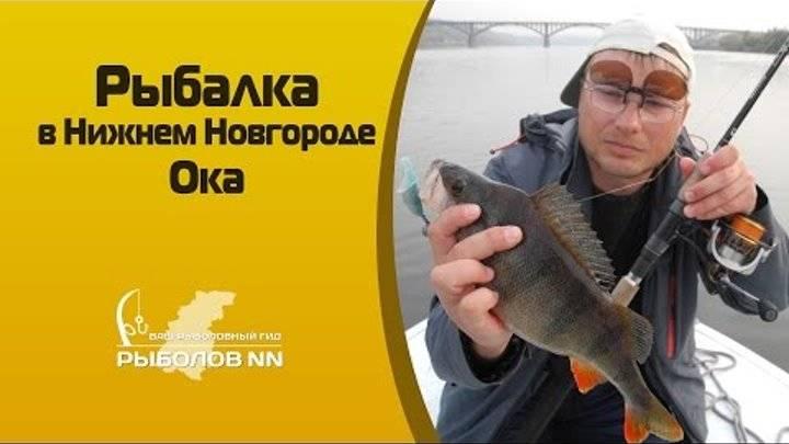 Рыбалка в нижнем новгороде: лучшие рыболовные места, ловля на гребном канале, озере лунское