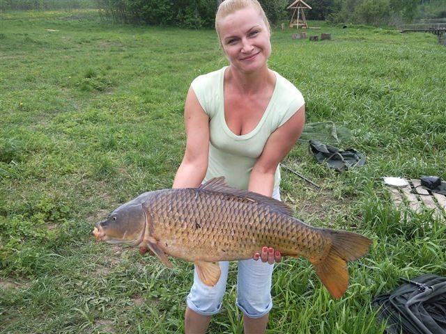 Рыбалка в подольске и подольском районе, как ловить на местных озерах и реках