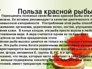 Самый ценный деликатес — красная икра кеты: расскажем о ее полезных свойствах