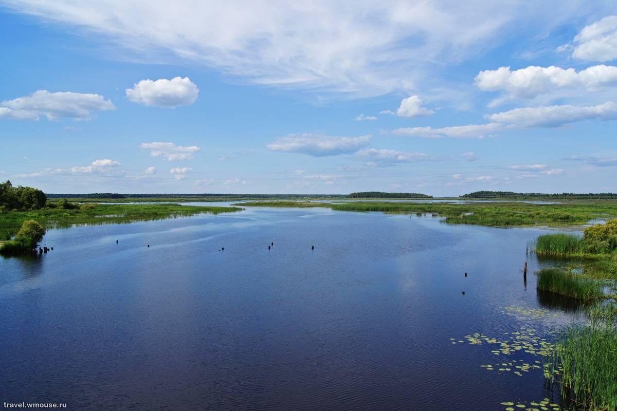 Озеро сапшо, смоленская область. отдых, рыбалка, снять домик, фото, карта, отзывы, как добраться — туристер.ру