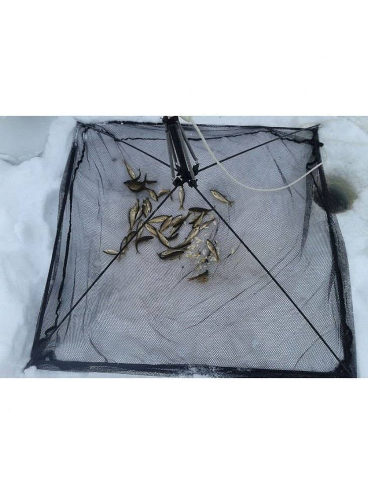 Паук для рыбалки | изготовление паука своими руками и ловля рыбы