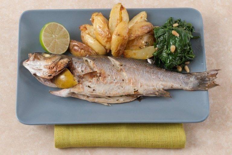 Рыба сибас: описание с фото, где обитает, польза и вред