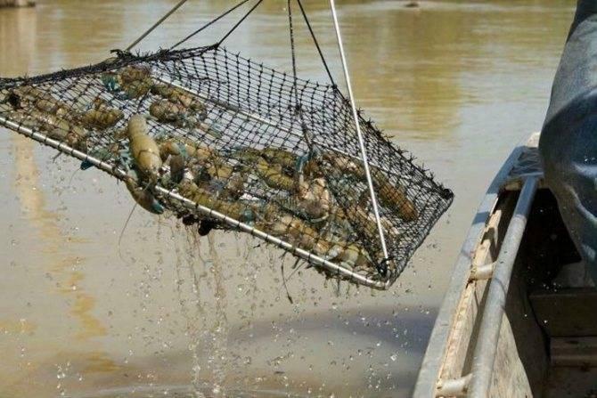 Косынка для рыбалки – изготовление своими руками [2019]