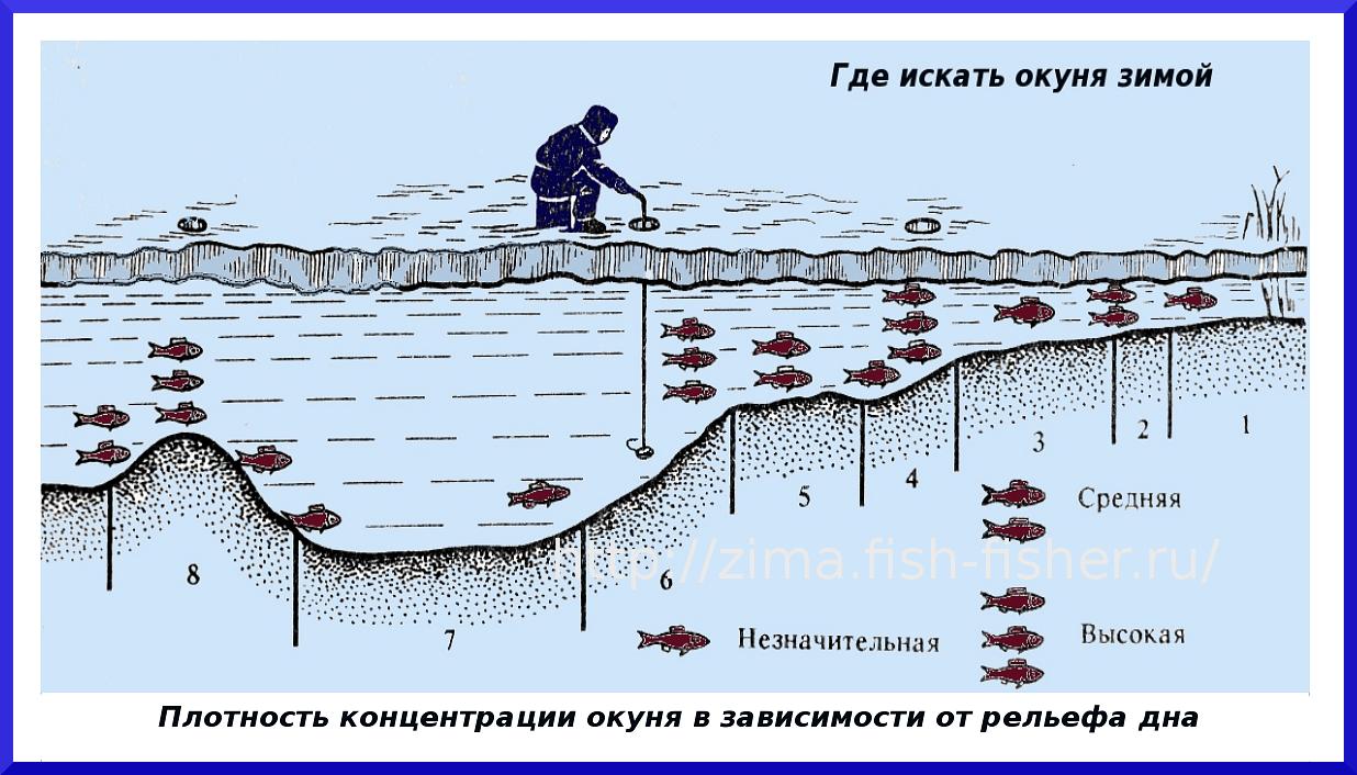 Как и где искать рыбу на водоеме. Поиск рыбы на реках, озерах и водохранилищах.