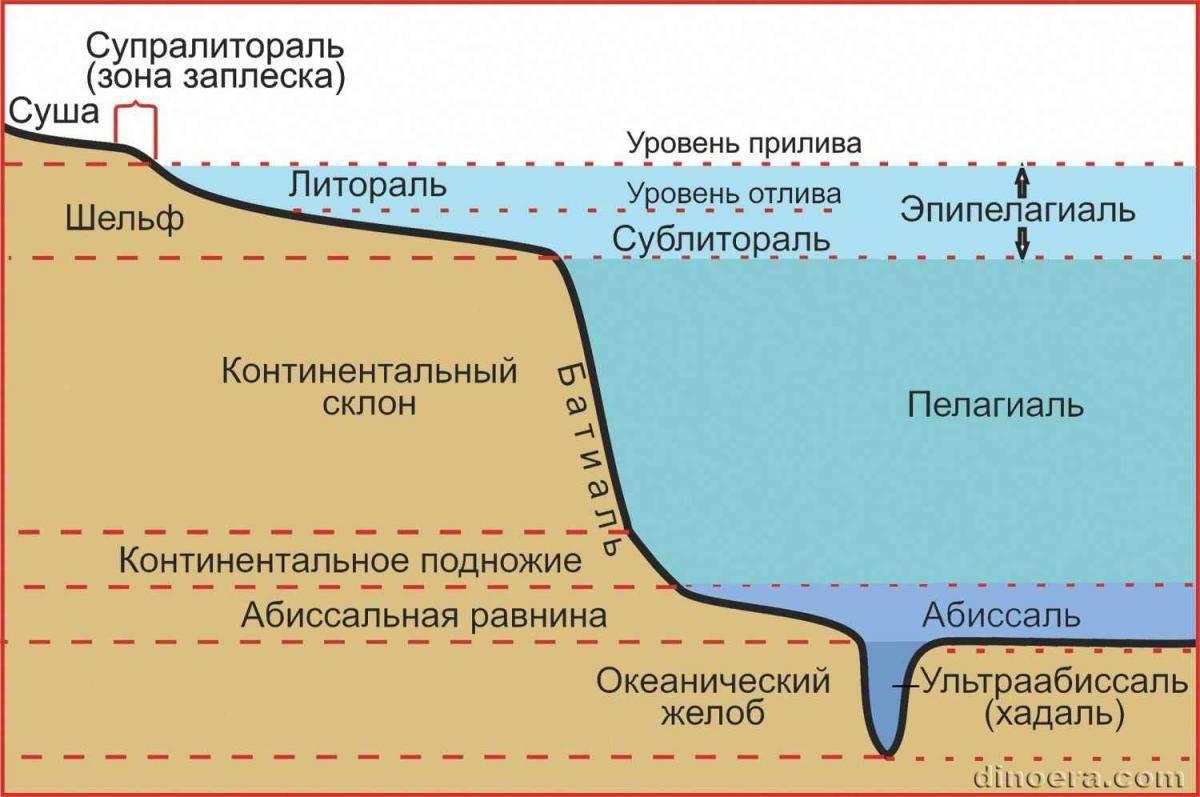 Определение (изучение) рельефа и структуры дна.выбор места ловли