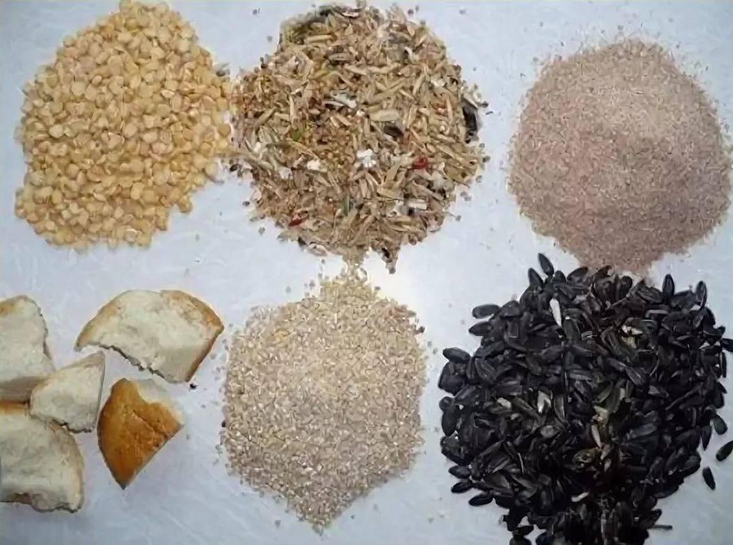 Рецепты прикормки для плотвы зимой под разные условия ловли рецепты прикормки для плотвы зимой под разные условия ловли