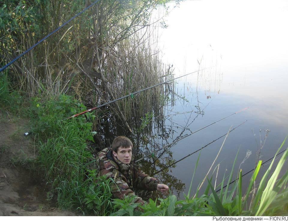 Рыбалка в березняках егорьевского района: особенности, какая рыба водится