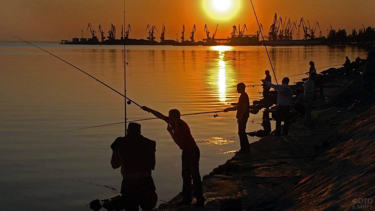 Снасти для ловли бычка на азовском море: как и на что ловить рыбу с берега сегодня, наживка и оснастка