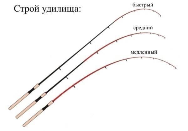 Строй спиннинга: что это такое в спиннинговых удилищах? таблица. средне-быстрый строй и другие виды. как его определить?