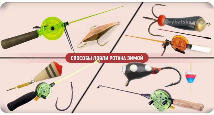 Рыба ротан (50 фото): внешний вид и места обитания, особенности ловли, польза и вред для водоема, применение в кулинарии