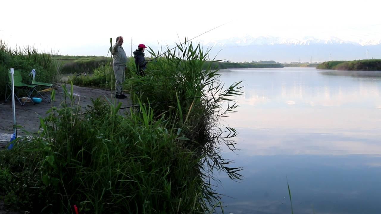 Рыбалка на сахалине: какая рыба водится, лучшие места для ловли зимой