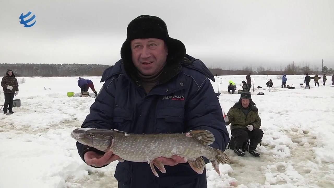 Березняки: платная рыбалка и отдых