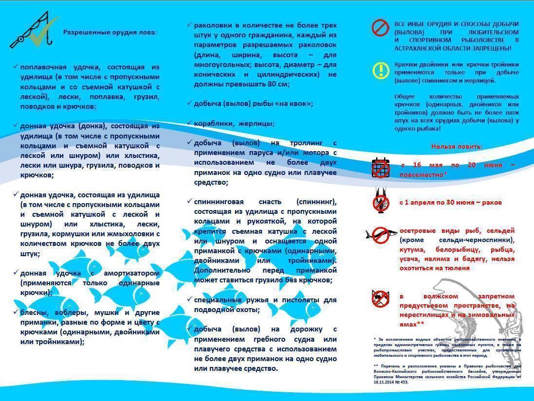 Нерестовый запрет - 2019 в астраханской области: актуальные сроки и места лова рыбы