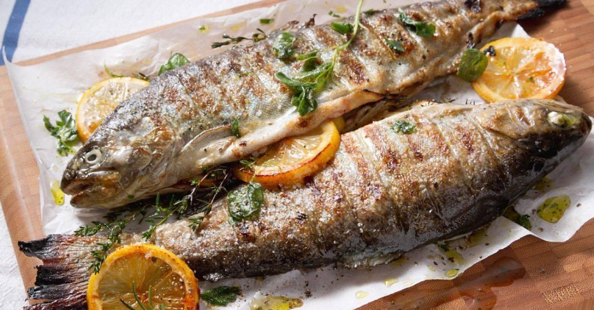 Форель на гриле – изумительная рыбка! лучшие маринады с лимоном, вином, соевым соусом, фенхелем, апельсином для форели на гриле