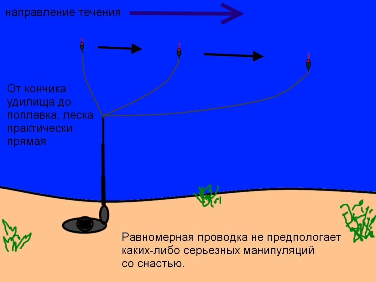 Эффективная ловля щуки на джиг: верная тактика проводки и снасть
