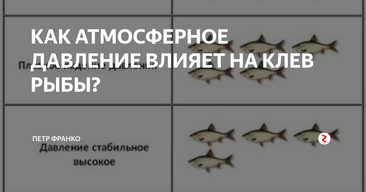 Влияние атмосферного давления на клев рыбы – прямое и опосредованное