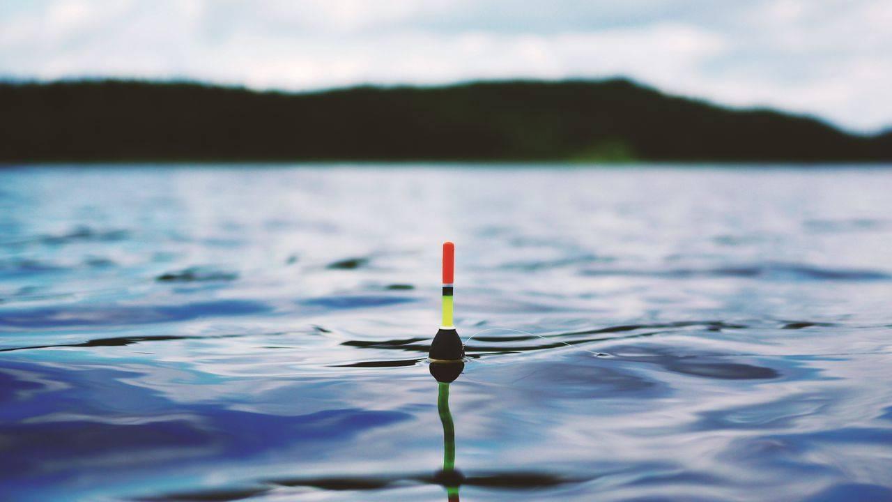 Успех рыбалки - разное