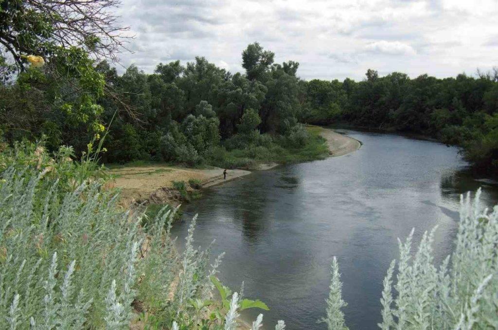 Река хопер от истока до устья с притоками на карте мира, сплав по реке, заповедник, примечательные места