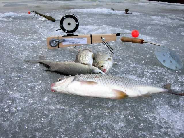 5+5 хитрых лайфхаков и полезных советов для рыбалки: секреты бывалых рыбаков