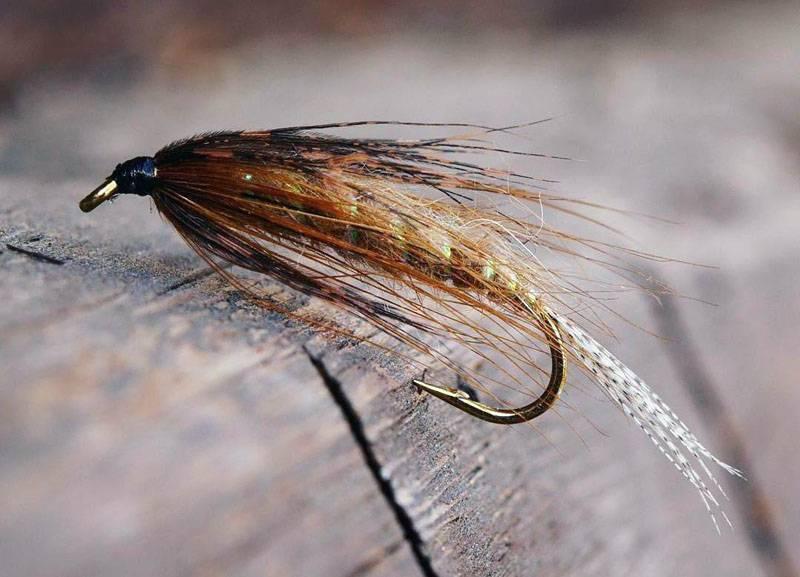 Поденка и ее личинка как насадка для ловли рыбы