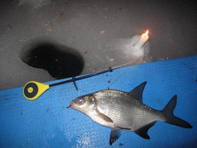 Ловля леща зимой — где когда и как ловить — рыбалка отдых для души