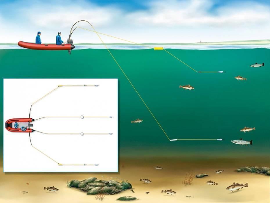 Секреты успешной рыбалки наморе