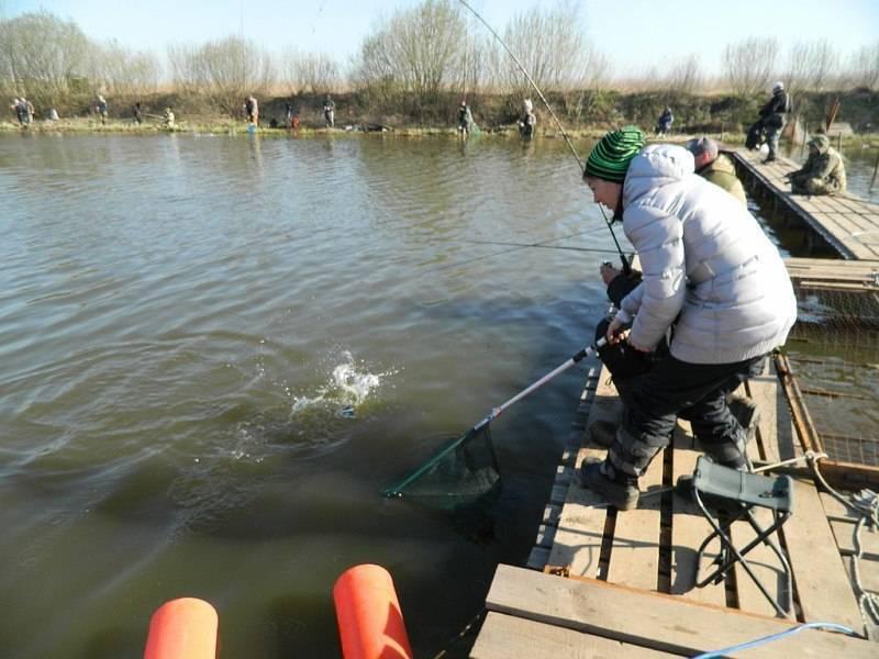 Можно ли рыбачить на рыбоводных участках: допуск рыбака к водоёму