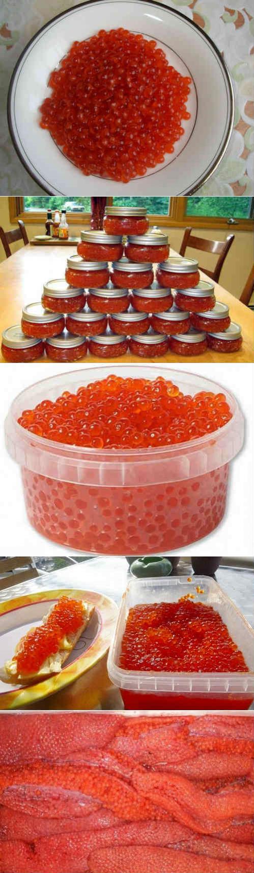Как посолить красную икру горбуши в домашних условиях