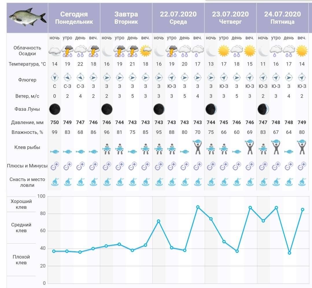 Миллерово - календарь рыболова. рыбалка в миллерово, график клёва рыбы.