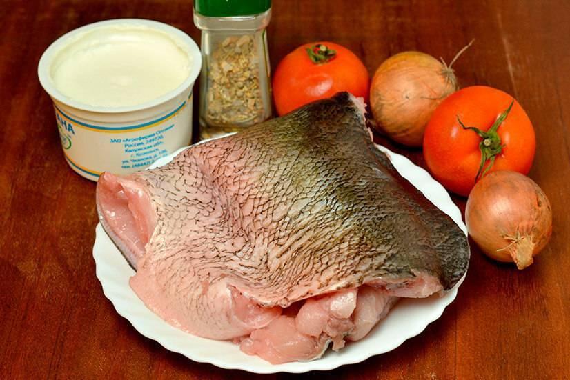 Толстолобик — что это за рыба, чем полезна и как ее готовить?