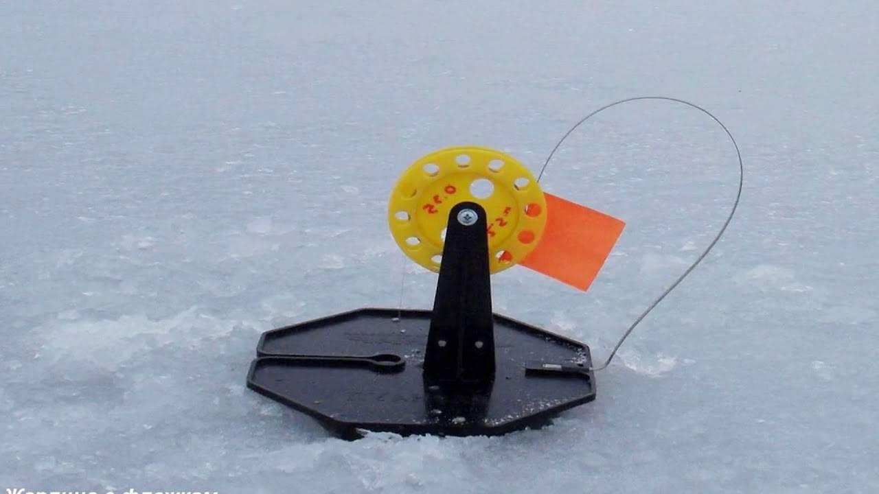 Топ 10 гигантских щук пойманных на жерлицу. фоторейтинг fishingsib