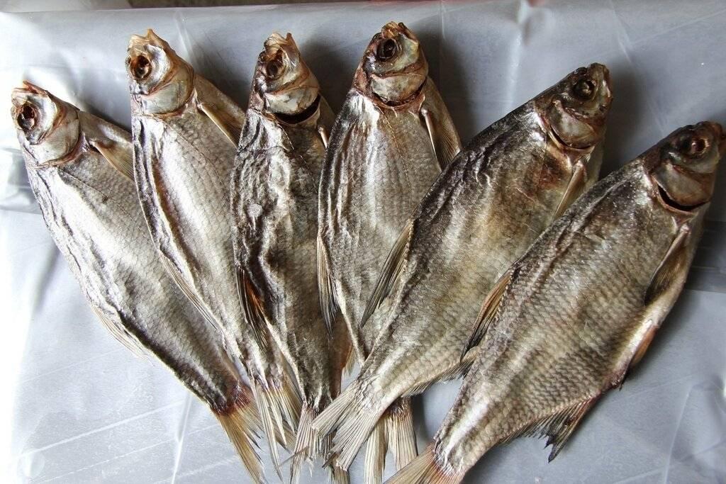 Как вялить рыбу в домашних условиях — рецепты засолки, калорийность, сколько нужно завяливать по времени