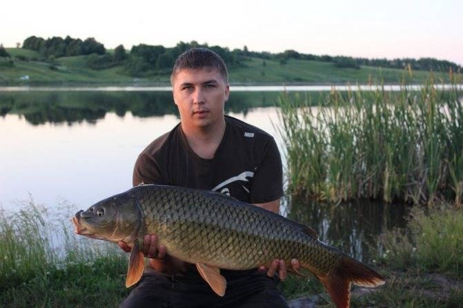 Платная рыбалка: юсупово (домодедовский район)