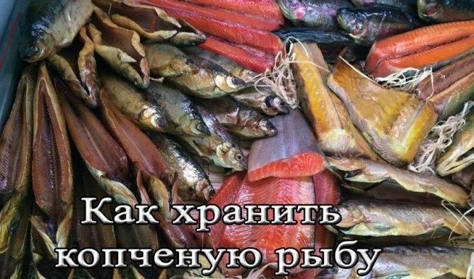 Правила и сроки хранения копченой рыбы в домашних условиях