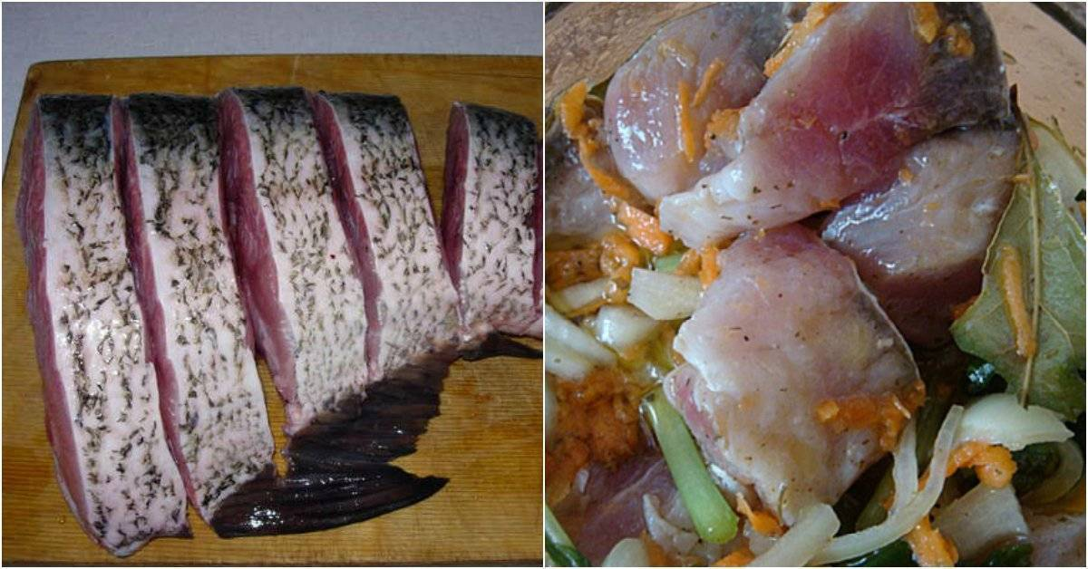 Маринованный толстолобик – кулинарный рецепт