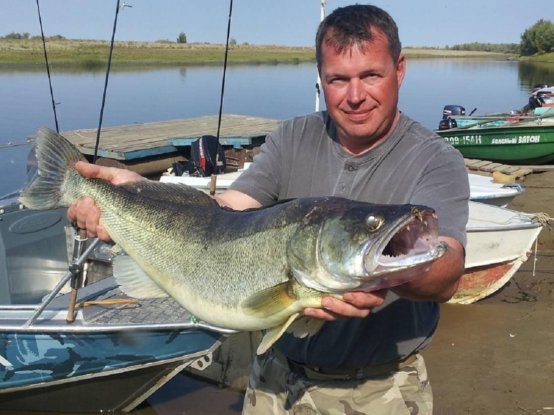 Турбаза авалон / рыбалка на ахтубе