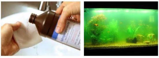 Правильная чистка аквариума и приспособления для облегчения работы