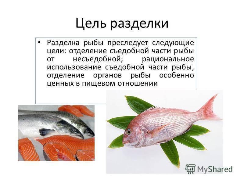 Как разделать рыбу - wikihow