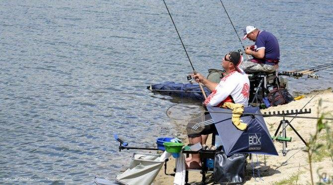 Экстракторы для рыбалки (28 фото): как пользоваться экстрактором, чтобы вытащить крючок из рыбы? как сделать своими руками?