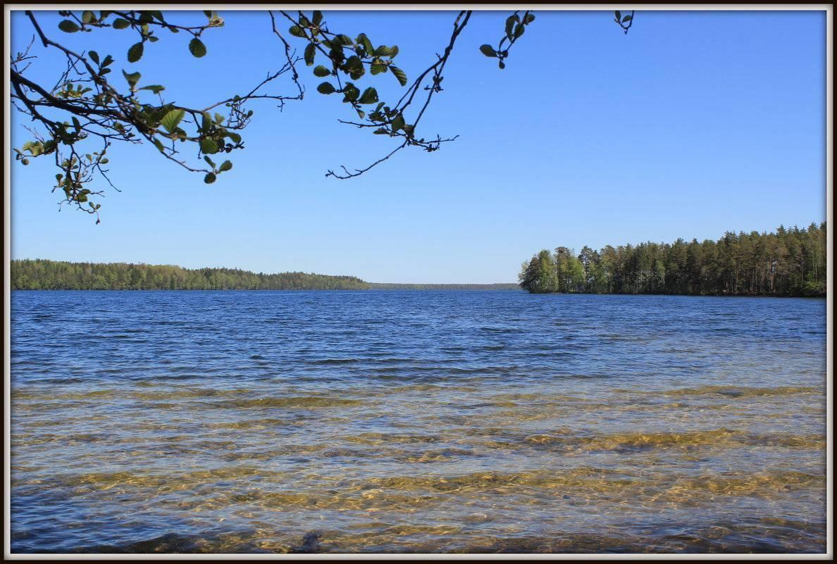 Соленое озеро в веселовке, краснодарский край — свойства, базы отдыха, на карте, отзывы, как проехать, фото