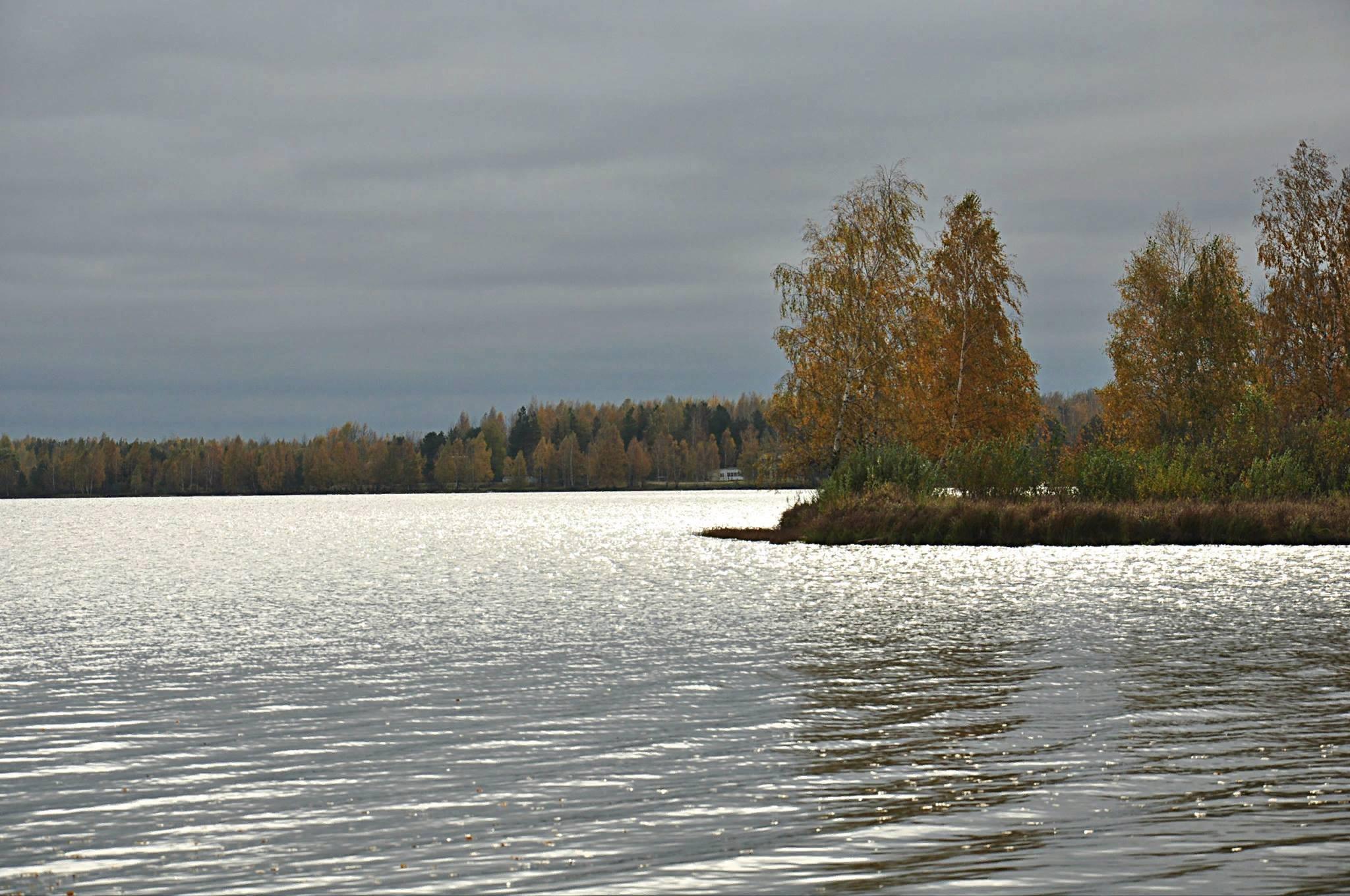 Кратовское озеро — рыбалка, фото и видео, как добраться, отдых 2020, отели рядом на туристер.ру
